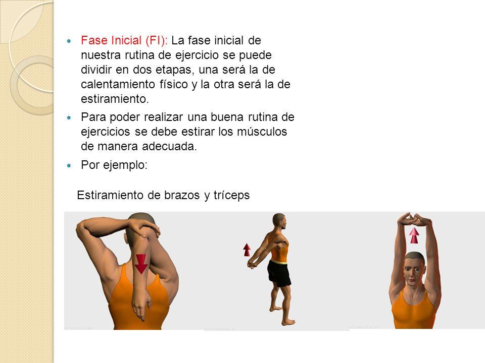Fase Inicial (FI): La fase inicial de nuestra rutina de ejercicio se puede dividir en dos etapas, una será la de calentamiento físico y la otra será la de estiramiento.