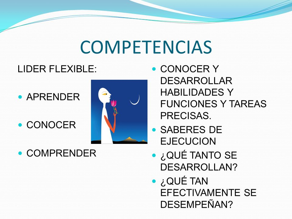 COMPETENCIAS LIDER FLEXIBLE: APRENDER CONOCER COMPRENDER