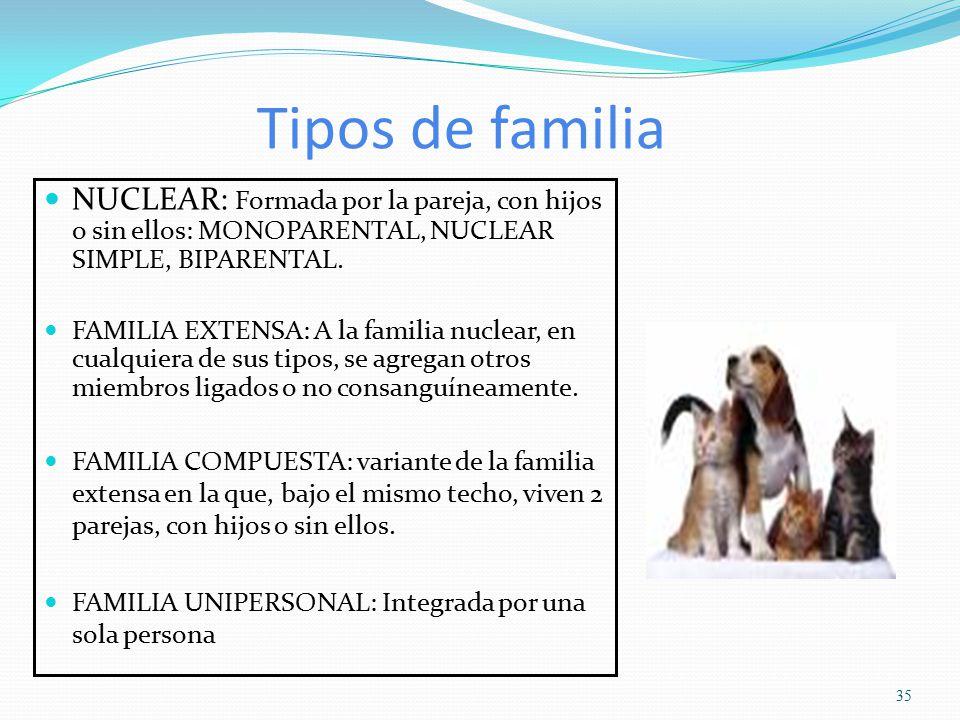 Caracteristicas de la familia extensa modificada cryptorich for Concepto de familia pdf