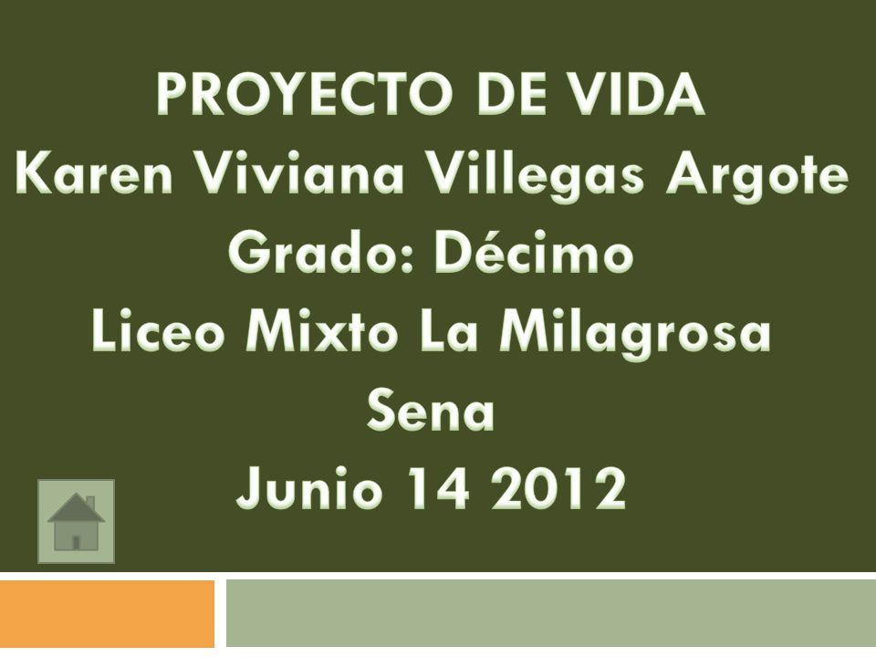 Karen Viviana Villegas Argote Liceo Mixto La Milagrosa