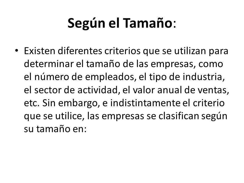 Según el Tamaño: