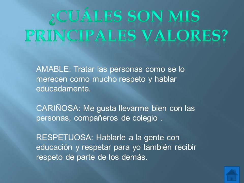 ¿Cuáles son mis principales Valores