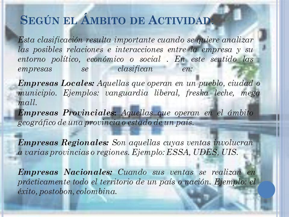 Según el Ámbito de Actividad: