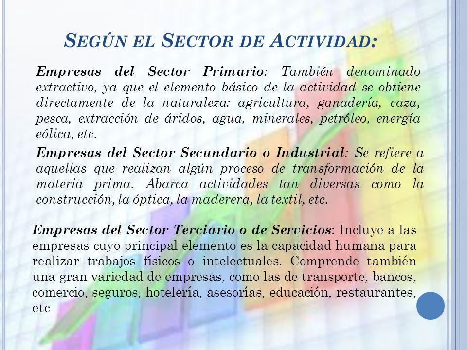 Según el Sector de Actividad: