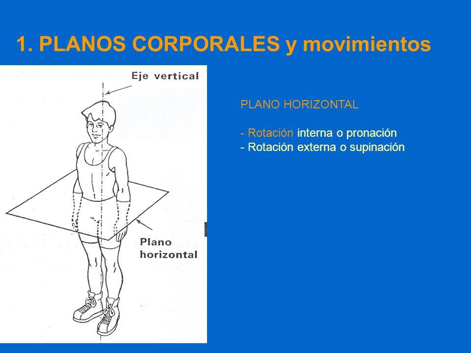 Lujo Eje De La Anatomía De Rotación Foto - Imágenes de Anatomía ...