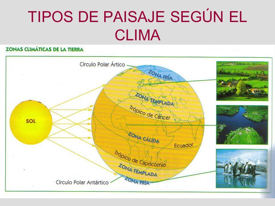 Tipos de paisaje seg n el clima ppt descargar - Tipos de paisajes ...