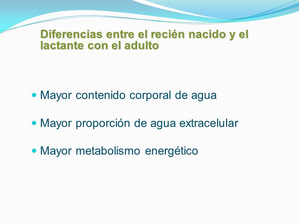 Mayor contenido corporal de agua Mayor proporción de agua extracelular