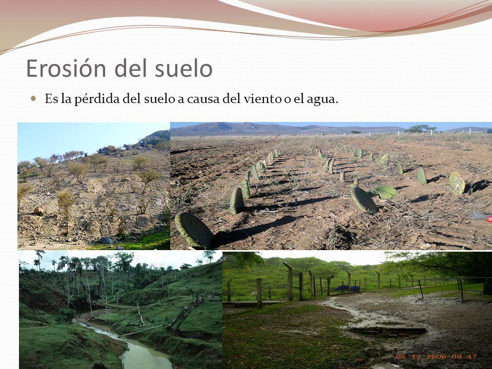 La erosi n es una causa de contaminaci n cluber for 5 cuidados del suelo