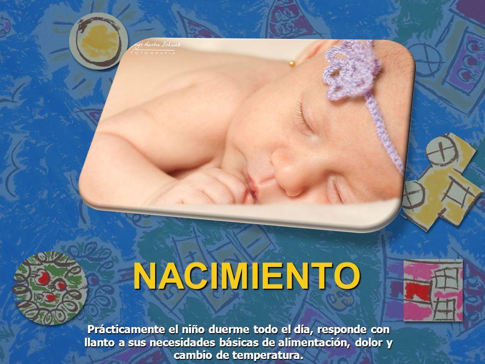 Prácticamente el niño duerme todo el día, responde con llanto a sus necesidades básicas de alimentación, dolor y cambio de temperatura