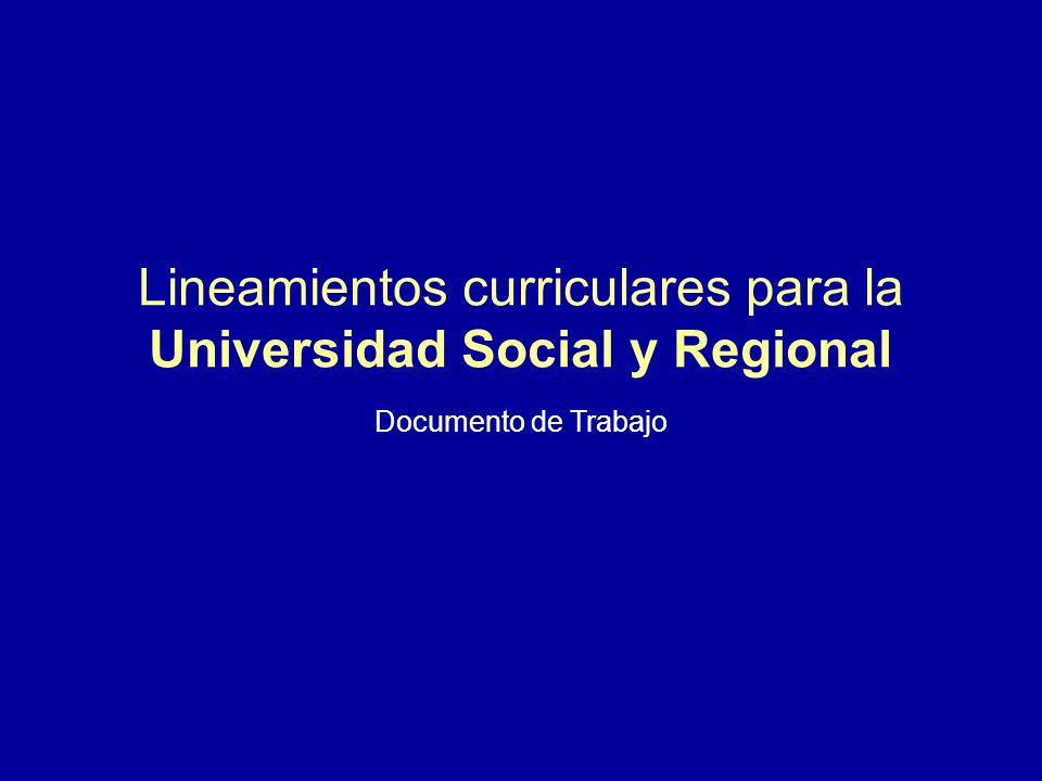 Lineamientos curriculares para la Universidad Social y Regional