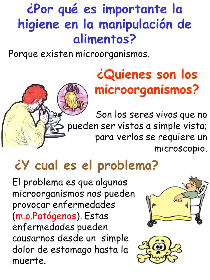 Higiene y manipulacion de alimentos ppt video online descargar - Carne manipulacion de alimentos ...