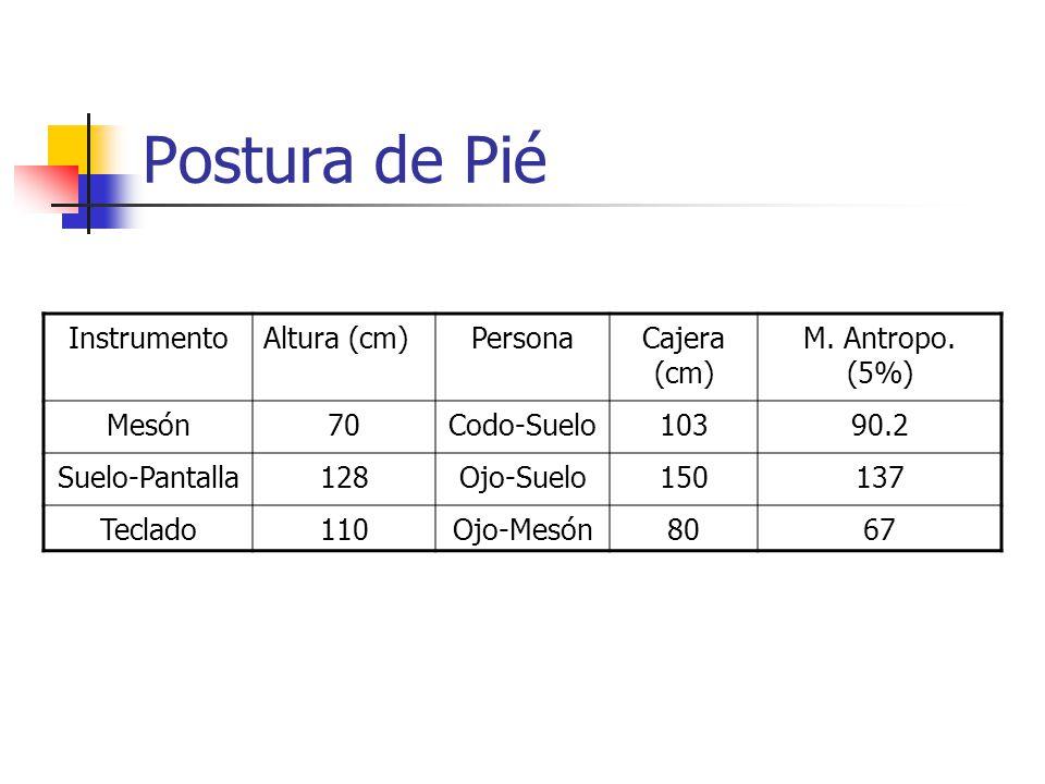 Postura de Pié Instrumento Altura (cm) Persona Cajera (cm)