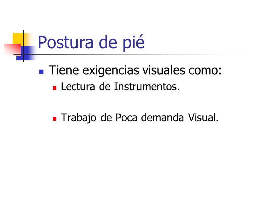 Postura de pié Tiene exigencias visuales como: