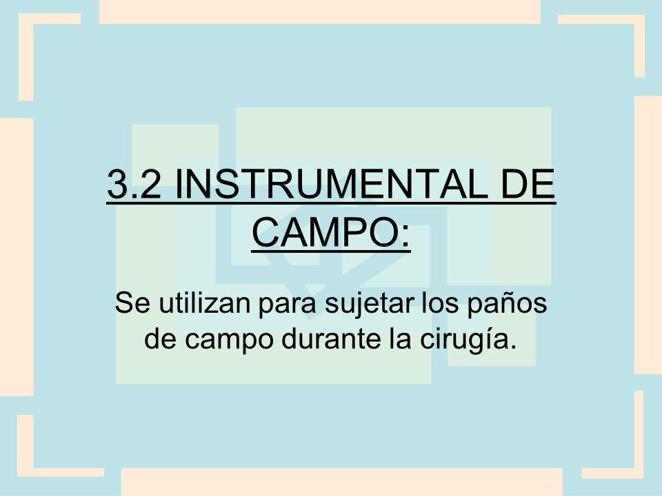 3.2 INSTRUMENTAL DE CAMPO: