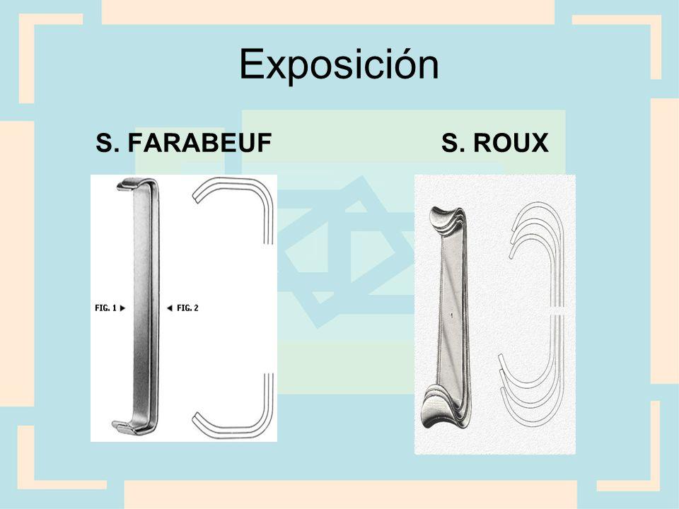 Exposición S. FARABEUF S. ROUX