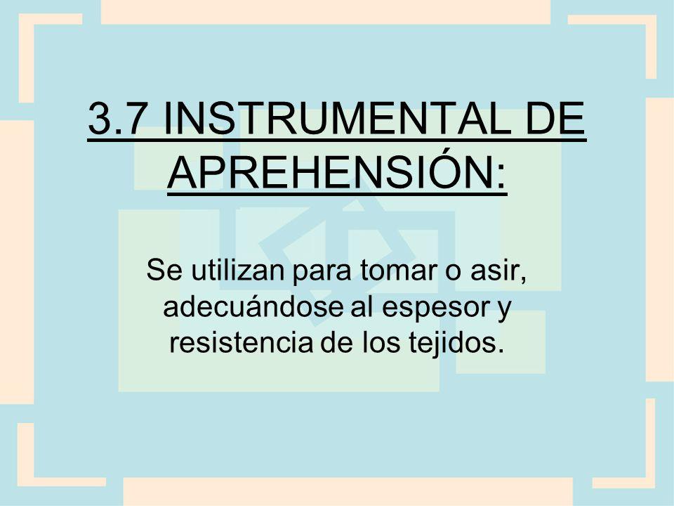 3.7 INSTRUMENTAL DE APREHENSIÓN: