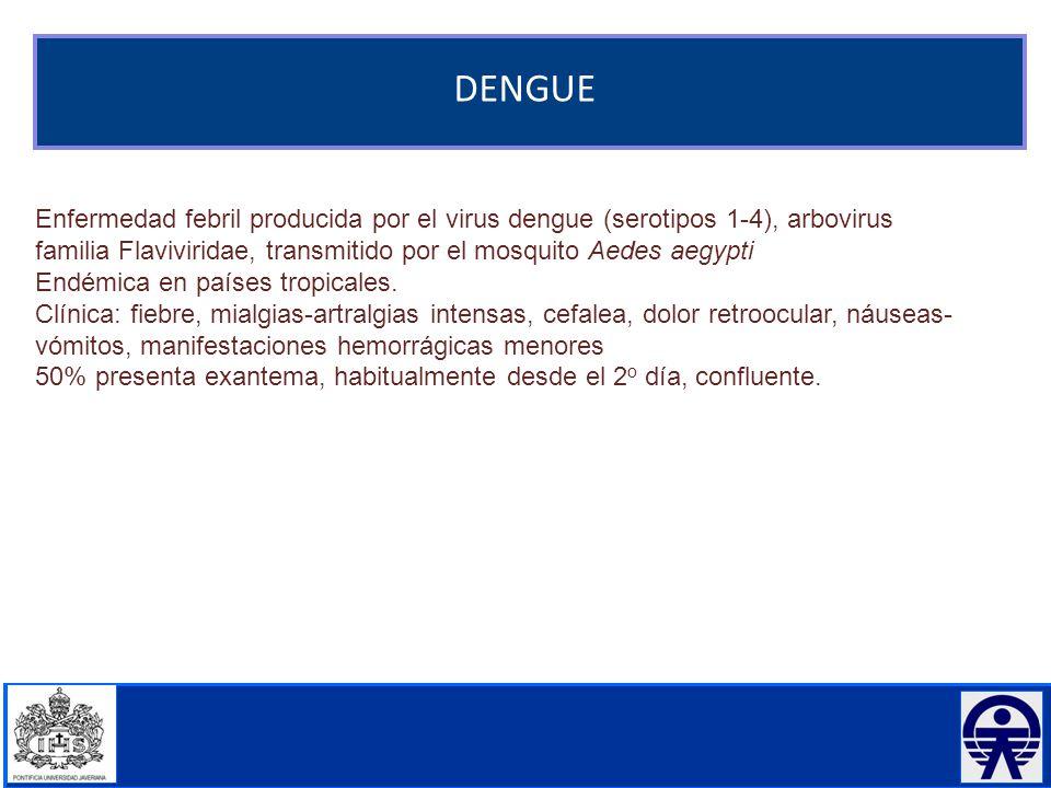 DENGUE Enfermedad febril producida por el virus dengue (serotipos 1-4), arbovirus familia Flaviviridae, transmitido por el mosquito Aedes aegypti.
