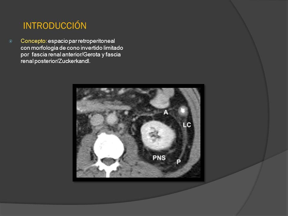 INTRODUCCIÓN Concepto: espacio par retroperitoneal con morfología de ...