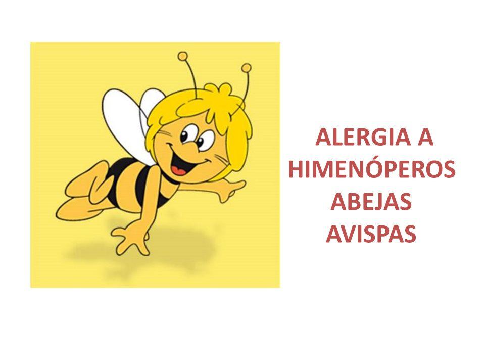 ALERGIA A HIMENÓPEROSABEJAS