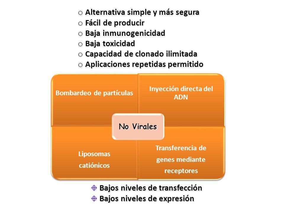 Vectores no virales ventajas componentes simples ppt for No mas 900 oficina directa