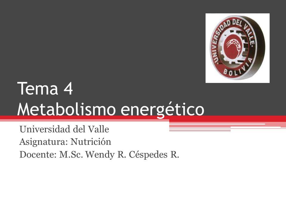 Tema 4 Metabolismo energético