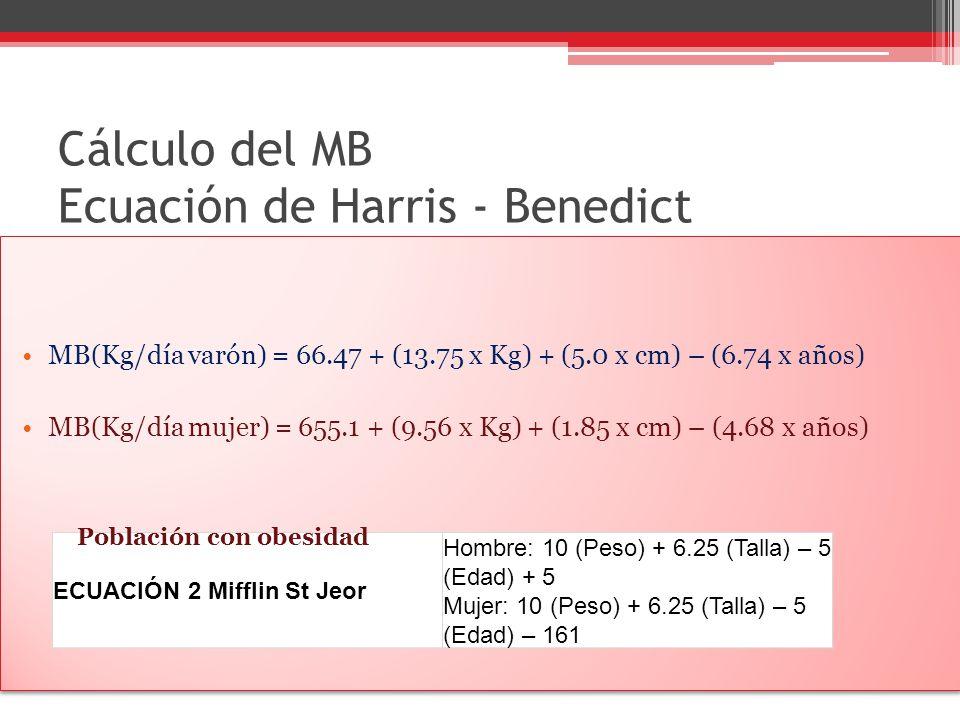 Cálculo del MB Ecuación de Harris - Benedict