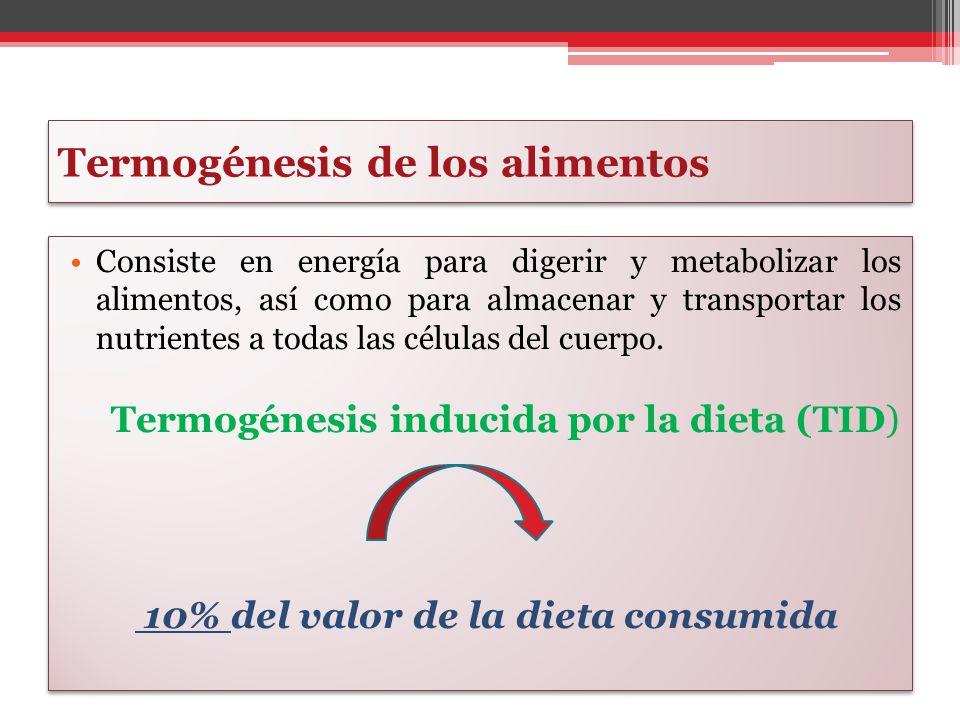 Termogénesis de los alimentos