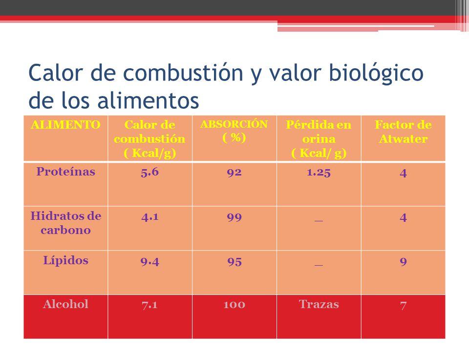 Calor de combustión y valor biológico de los alimentos