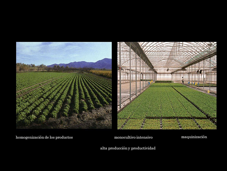 homogenización de los productos