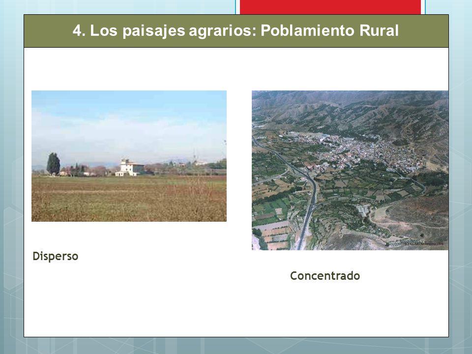 4. Los paisajes agrarios: Poblamiento Rural