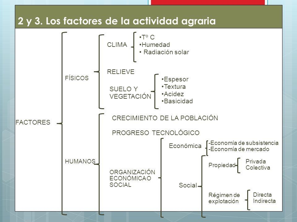 2 y 3. Los factores de la actividad agraria