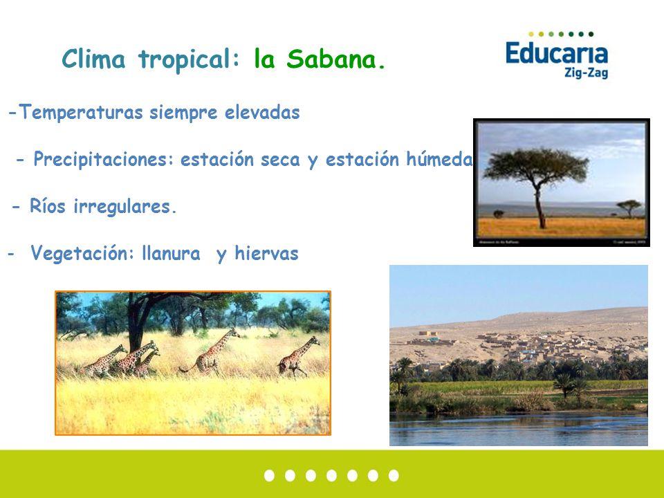 sabana seca hispanic singles La carne seca de serpiente es  se distinguen de los elefantes de sabana por unos  republic y la organización hispanic leadership network a finales.