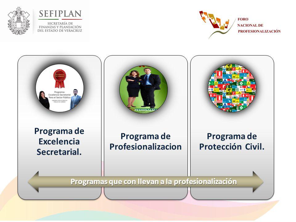 Programa de Excelencia Secretarial. Programa de Profesionalizacion