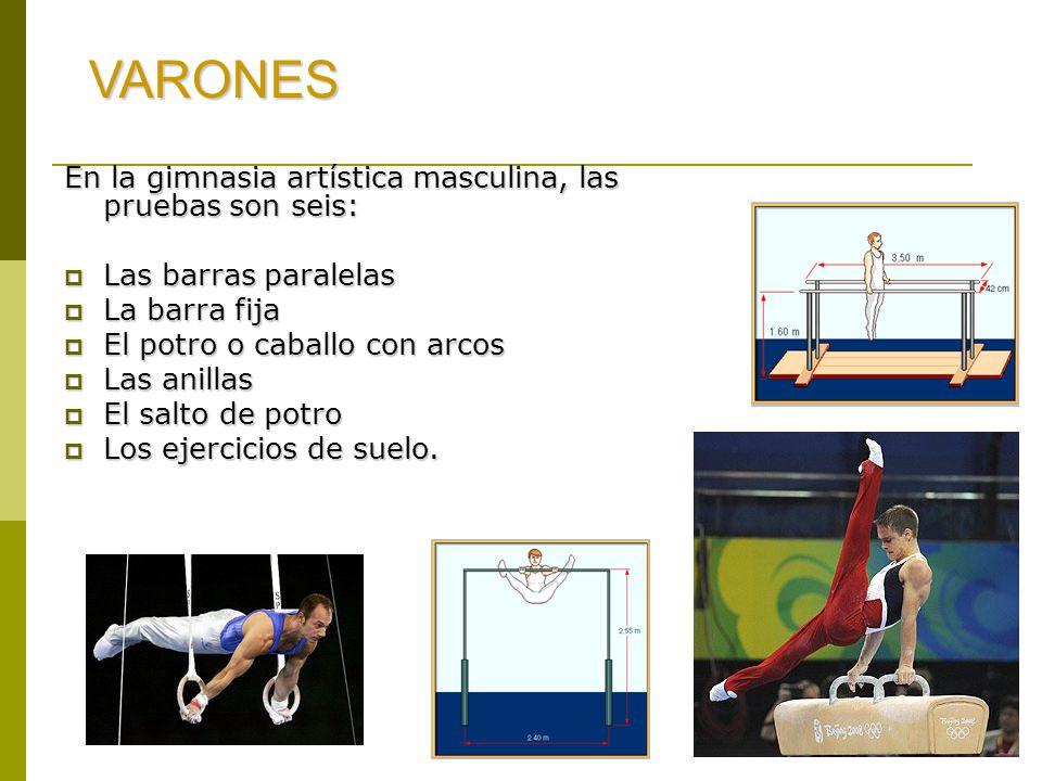 VARONES En la gimnasia artística masculina, las pruebas son seis: