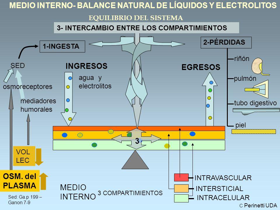 MEDIO INTERNO- BALANCE NATURAL DE LÍQUIDOS Y ELECTROLITOS