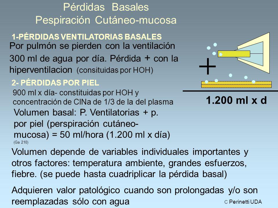 Pérdidas Basales Pespiración Cutáneo-mucosa