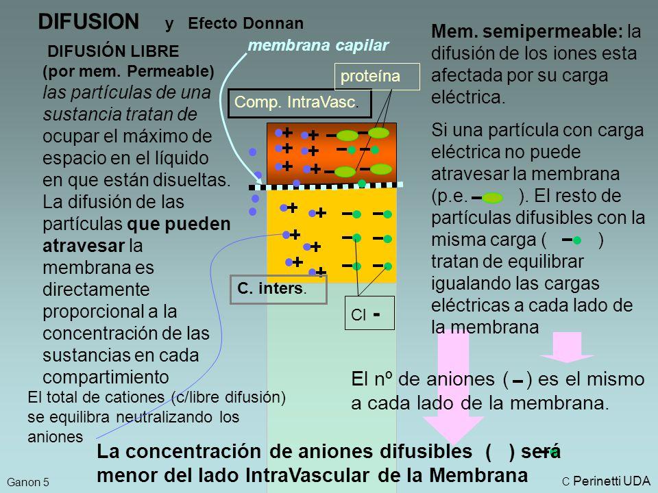 DIFUSION y Efecto Donnan