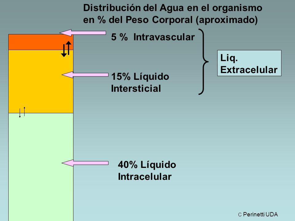 15% Líquido Intersticial