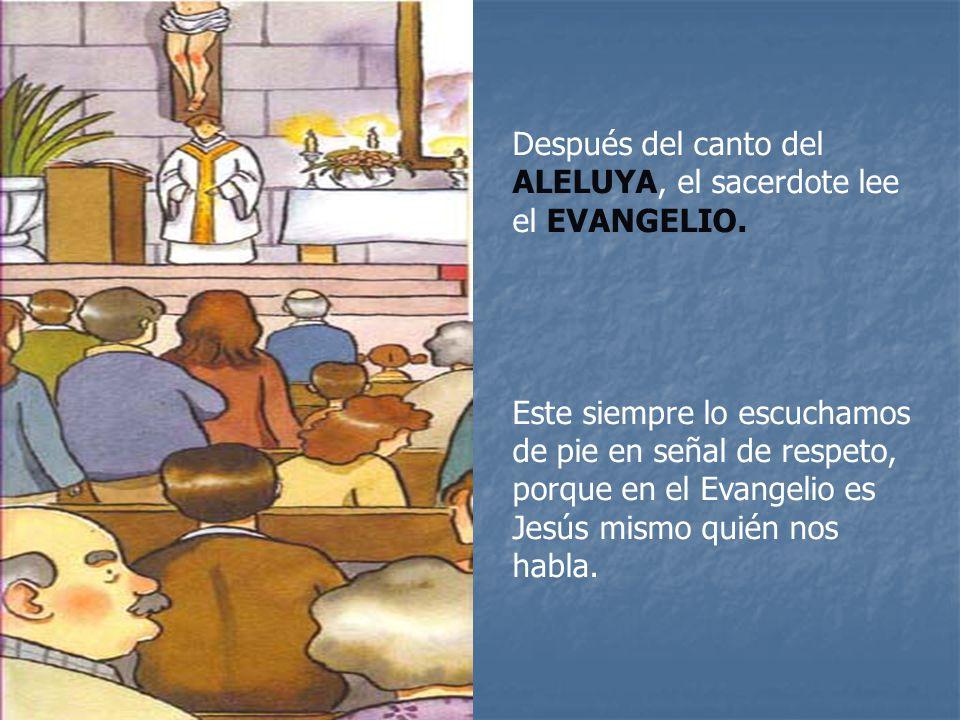 Después del canto del ALELUYA, el sacerdote lee el EVANGELIO.