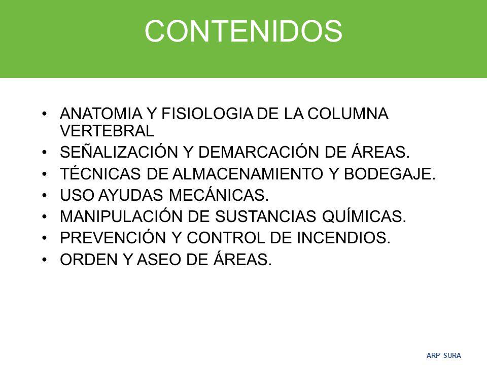 CONTENIDOS ANATOMIA Y FISIOLOGIA DE LA COLUMNA VERTEBRAL