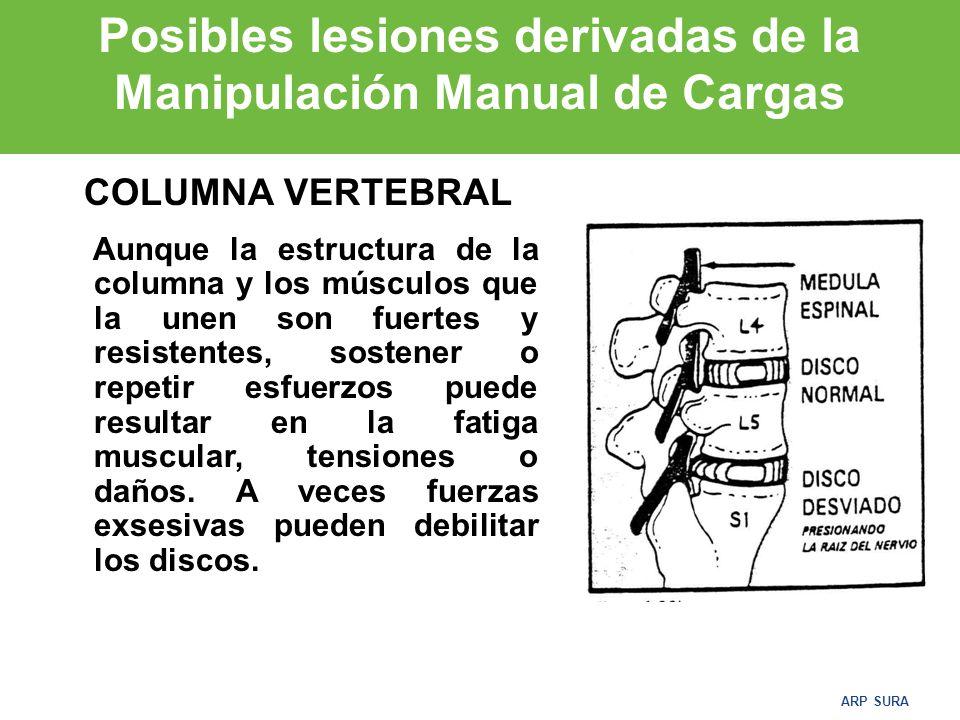 Posibles lesiones derivadas de la Manipulación Manual de Cargas