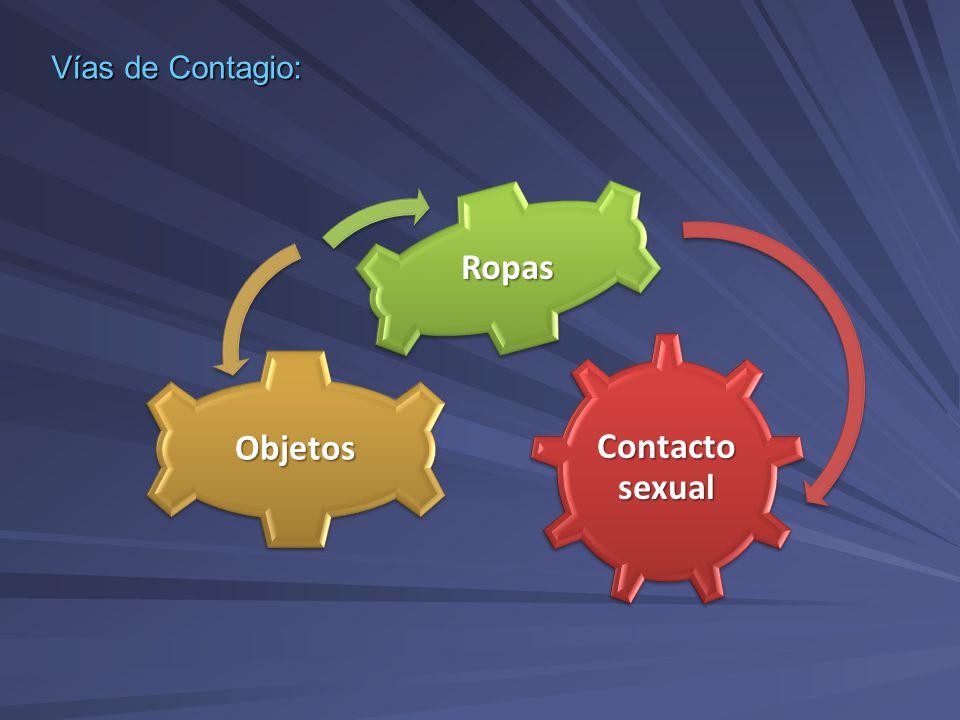 Contacto sexual Objetos Ropas