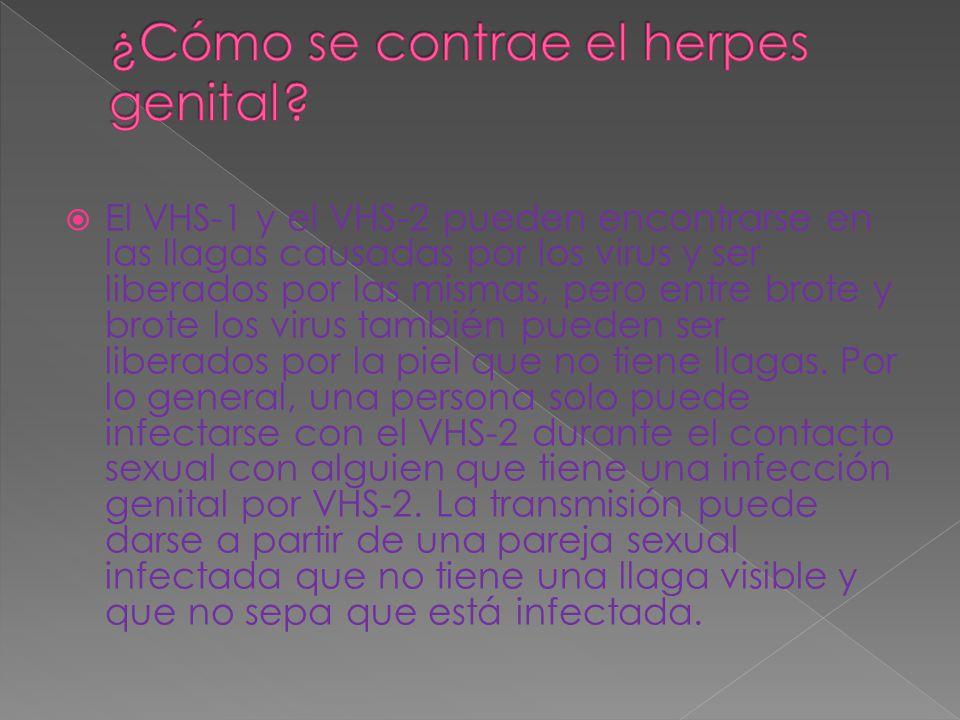 ¿Cómo se contrae el herpes genital
