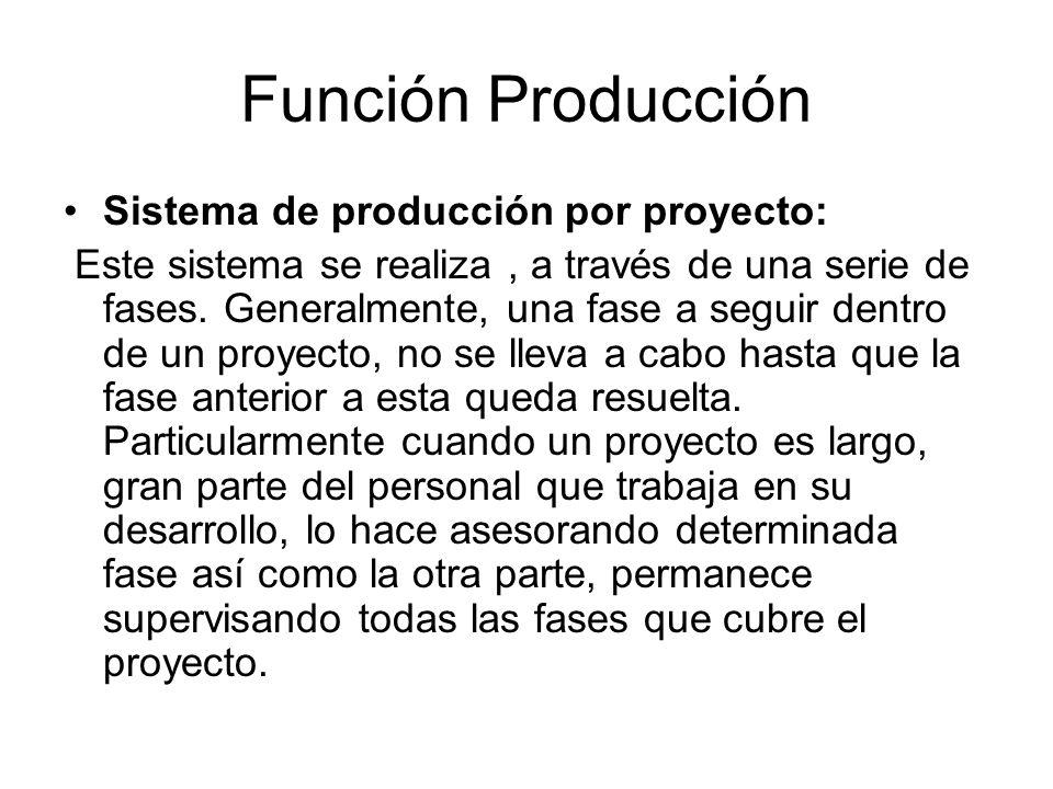 Función Producción Sistema de producción por proyecto: