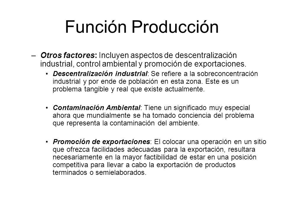 Función Producción Otros factores: Incluyen aspectos de descentralización industrial, control ambiental y promoción de exportaciones.
