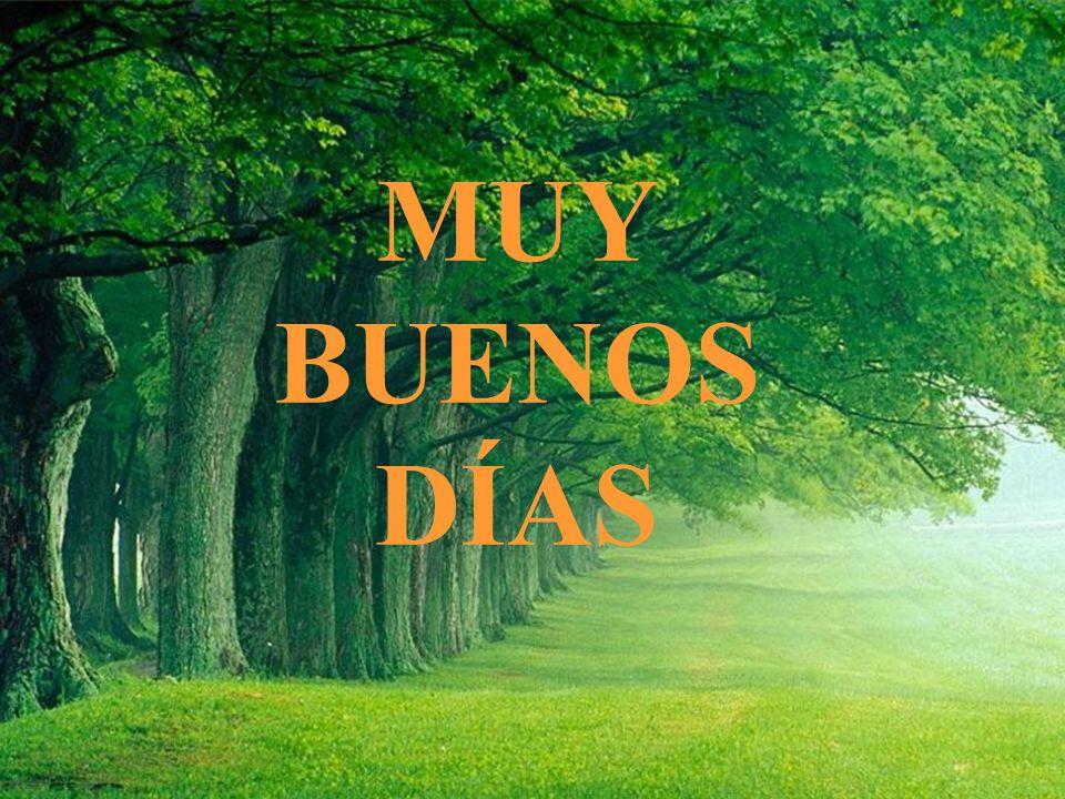 Muy Buenos Días Ppt Video Online Descargar