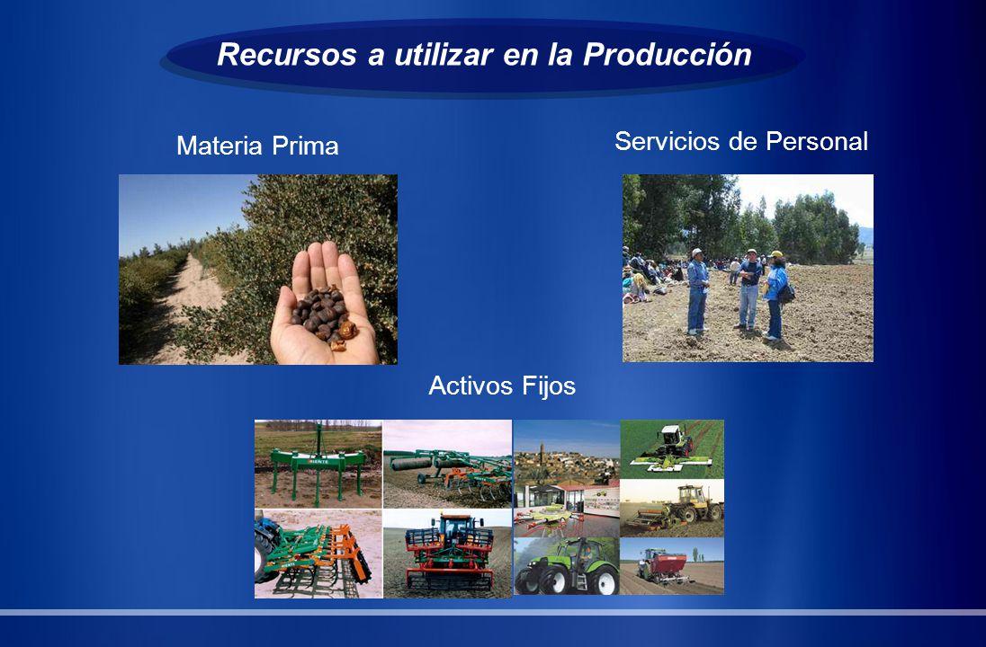 Recursos a utilizar en la Producción