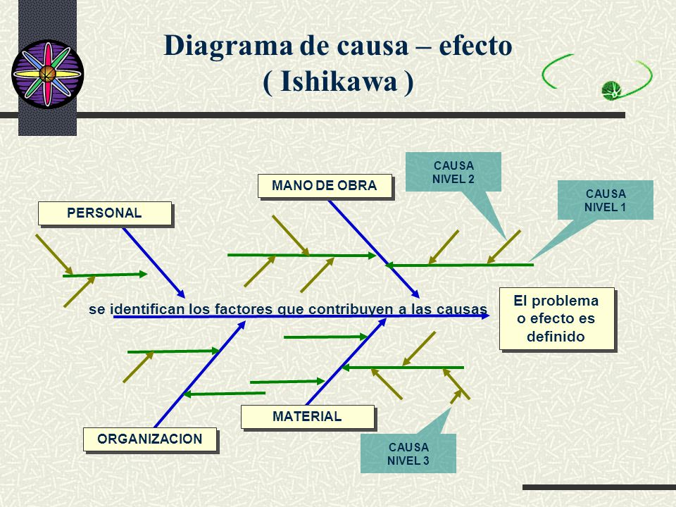 Único Diagrama De Un Esqueleto Adorno - Anatomía de Las Imágenesdel ...