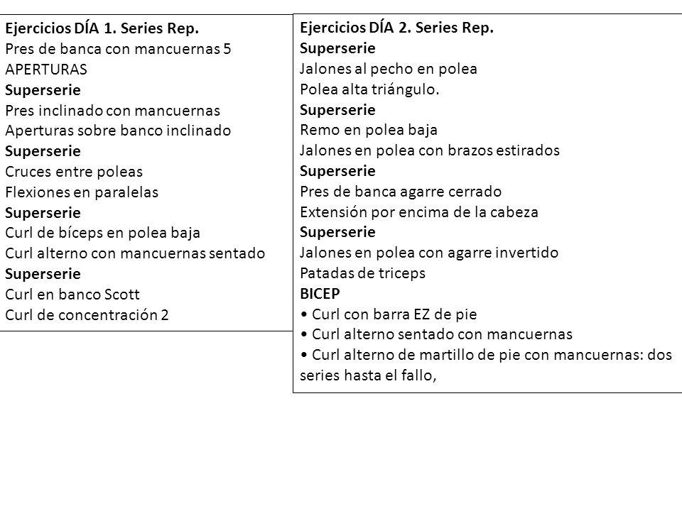 Ejercicios DÍA 1. Series Rep.