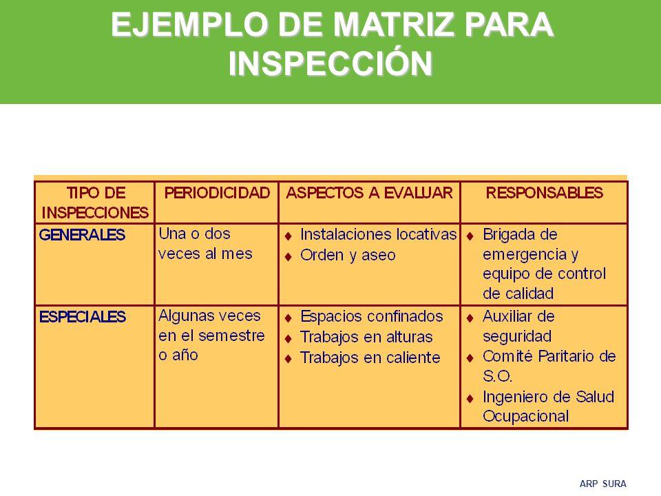 EJEMPLO DE MATRIZ PARA INSPECCIÓN